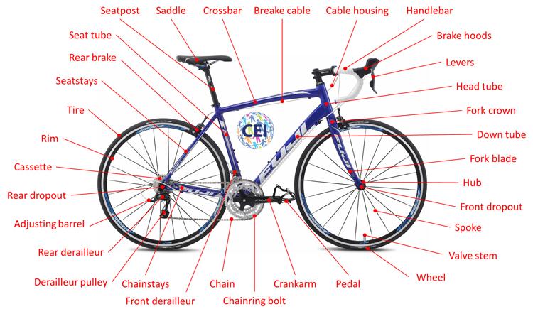 Parts Of The Bicycle Las Partes De La Bicicleta En Ingles Cei Academy