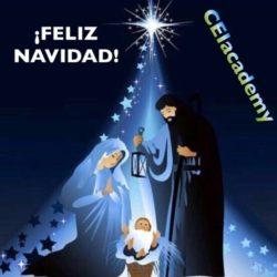 Desde CEI Academy te deseamos Felices Fiestas